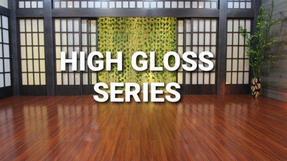 High Gloss Series